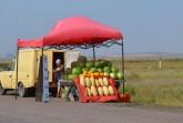 Gesalzene Wassermelonen