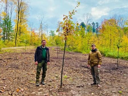 Baumpflanzaktion im Bürgerwald Brakel am 24. Oktober 2020.Foto:Stadt Brakel