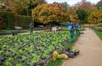 Natürliches Pflanzbild in Pastellfarben: Mitarbeiter des Fachbereichs Grünflächen machen die Beete im Botanischen Garten winterfest und pflanzen viele tausend Hingucker für den Frühling.Foto: Stadt Gütersloh