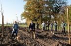 Ab jetzt wird er wachsen: 181 Bäume sind im ersten Jahr des BürgerWaldes von Patinnen und Paten finanziert worden. Derzeit werden die jungen Bäume in die Erde gebracht. Brigitte Büscher von der Bürgerstiftung und Norbert Morkes von der Stadt Gütersloh schauen dem Gärtnerteam Schreiber zu.Foto:Stadt Gütersloh