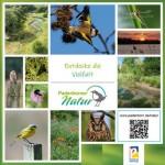 """Vielfalt der """"Paderborner Natur"""" online entdecken"""