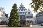 Mit einer Höhe von rund 19 Metern ist der Weihnachtsbaum der größte, der bisher vor dem Paderborner Rathaus stand.Foto: © Stadt Paderborn