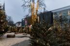 Weihnachtslandschaft in Gütersloh, Foto: Lena Descher