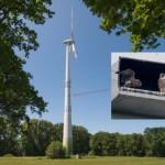 Wander- und Turmfalken brüten erfolgreich an Windkraftanlagen