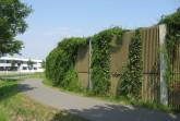Derzeit überprüft die Stadt die Lärmschutzwände im Stadtgebiet, wie hier am Wohnpark Wilhelmshöhe und muss daher die Begrünung an den Wänden zurückschneiden. Foto: Stadt Paderborn
