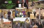 Collage zum Rückblick 2020 des Landesverbandes Lippe (Foto: Landesverband Lippe)