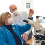 Corona-Virus zerstört Mikrogefäße der Leber