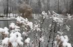 Die zukünftige Gartenschau in Bad Lippspringe, Foto: Stadt Bad Lippspringe