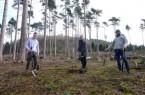 """Unterstützung der Initiative """"Jetzt Aufforsten"""" werden Bäume im NGP gepflanzt: (v.l.) Vincent Kinzel (Forstwirt und Gründer der Initiative """"Jetzt Aufforsten""""), Landrat Dr. Axel Lehmann und Daniel Lühr (Projektleiter Naturschutzgroßprojekt Senne und Teutoburger)"""