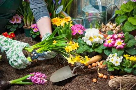 Gartenarbeit Tetanus