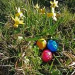 Eier haben zu Ostern in Bielefeld Hochsaison