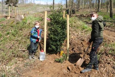 (V.li.) Anakin (7) und Raphael (9) von der OGS Lügde präsentieren stolz den Baum des Jahres: die europäische Stechpalme.