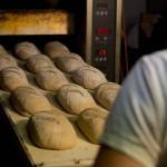 Bäckerei-Azubis in Ostwestfalen-Lippe fit für die Abschlussprüfung machen