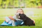 Das Infektionsrisiko bei Katzenbissen ist höher als bei Hundebissen. Foto: AOK/hfr.