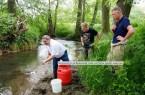Nach und nach gelangen die Jungfische in die Bega. Landrat Dr. Axel Lehmann gibt dabei mit Jürgen Braunsdorf und Jan-Nicolai Klement Starthilfe (v.l.)