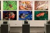 """Öffentliche Führungen durch die Sonderausstellung """"Mechanische Tierwelt"""" im Mindener Museum.Foto: Mindener Museum"""