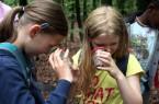 Beim Besuch im Wald im Rahmen der Ferienspiele gibt es für die Mädchen und Jungen mit allen Sinnen einiges zu entdecken.Foto:Stadt Gütersloh