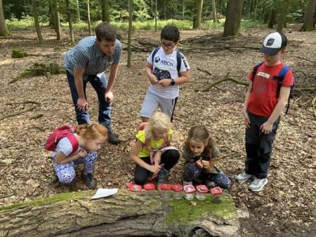 Im Wald gab es viel zu entdecken. Foto: ©Stadt Rheda-Wiedenbrück