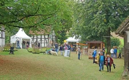 Am Lippischen Meierhof stehen die Bienen und insektenfreundliche Gärten im Mittelpunkt. Foto: LWL/Jähne
