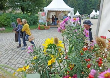 Besonders die Pflanzenfreunde kommen vor dem Krummen Haus auf ihre Kosten. Foto: LWL/Jähne